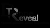 dronereveal.logo